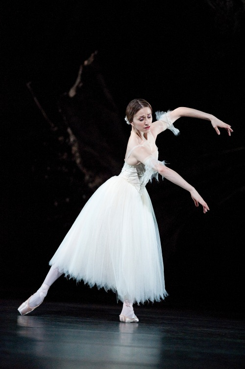 Giselle, Acte 2, Photo Tristram Kenton, courtesy of ROH