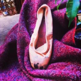 Haydée's Shoe