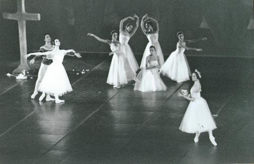 Platel Belarbi Arbo 1990