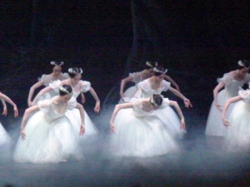 Dans l'écrin vaporeux du corps de ballet...