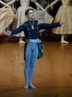 Alexis Renaud (Prince Grémine)