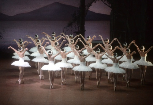 Ensemble in Swan Lake, © Stuttgart Ballet
